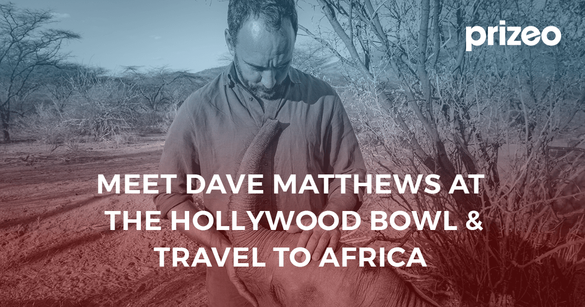 Meet dave matthews at the hollywood bowl travel to africa dave matthews band og image 39c9 opt m4hsunfo